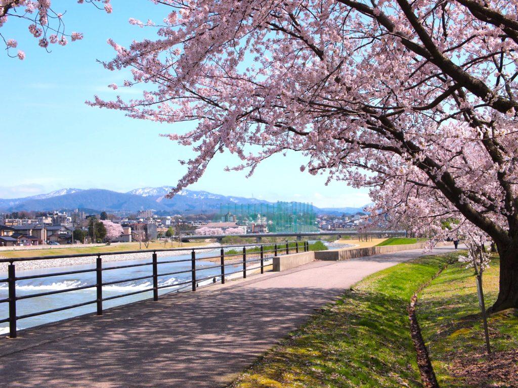 spring-kanazawa-saigawa-tateyama-view