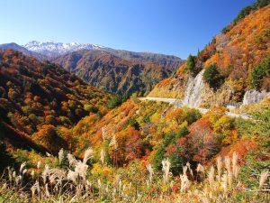 hakusan-autumn