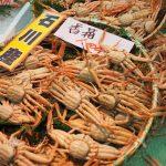 金沢港いきいき魚市カニカニまつりへ行ってみて残念だった事やお得だった事は?