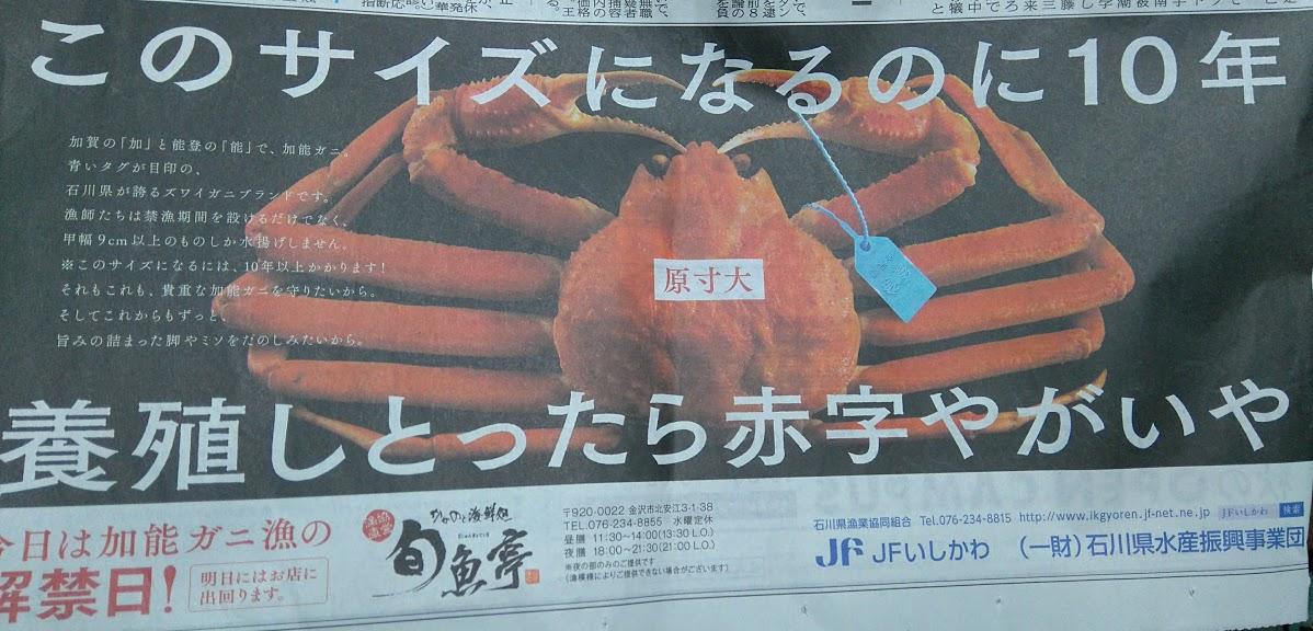 ads-news-image-crab-ishikawa