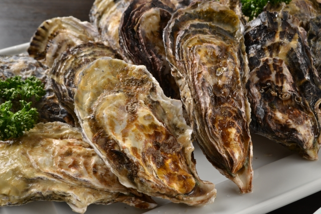noto-oyster-ishikawa