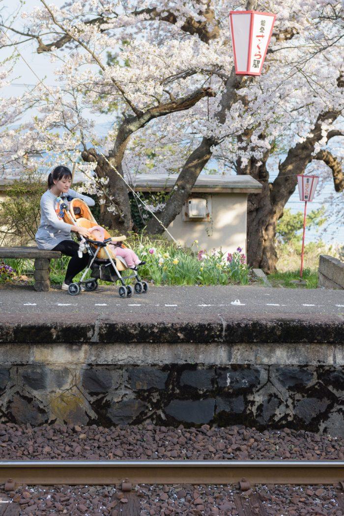 ohanami-noto-kashima-station-ishikawa