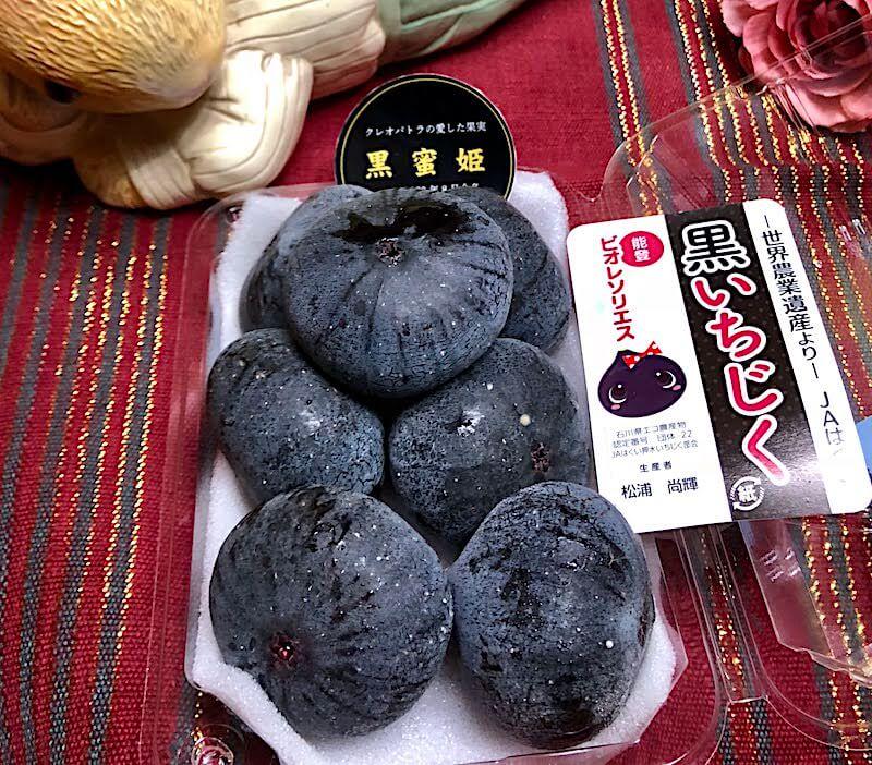 maboroshi-ichijiku-houdatsushimizu-hakui-ishikawa-japan