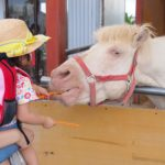 hori-farm-feeding-horse