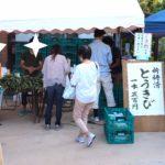 shimanrokusennichi-toukibi