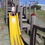 slide-yellow-hamanasu-kyouryu-park