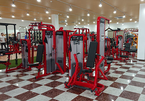 muscle-gym-machines