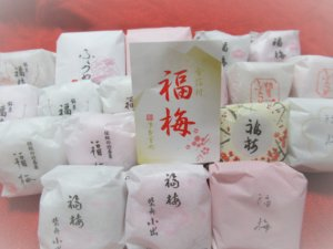 Fukuume -Kanazawa Local Traditional Sweets at New Year