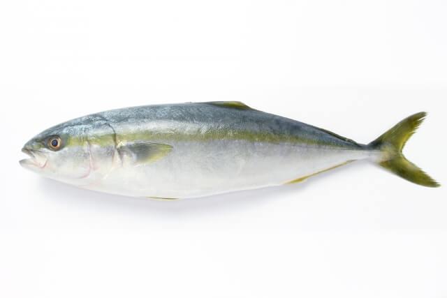 kanburi-ishikawa