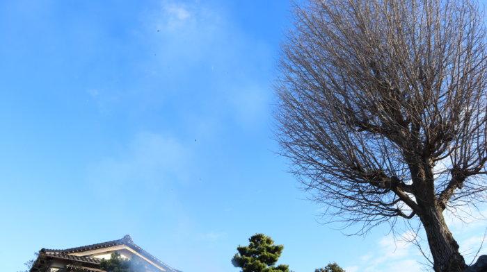 sagichou-sky-kanazawa-city