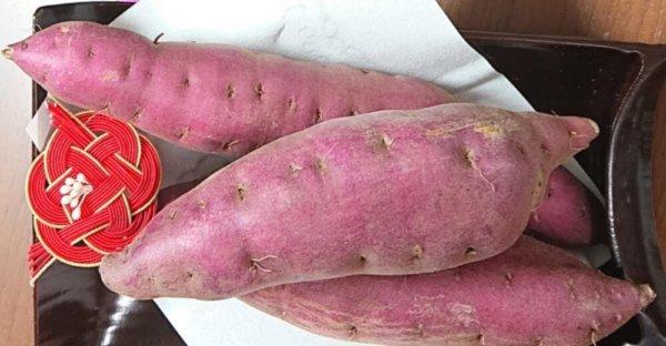 gorojimakintoki-local-sweet-potato-ishikawa-kanazawa