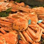 kanougani-Local-crab-kanazawa