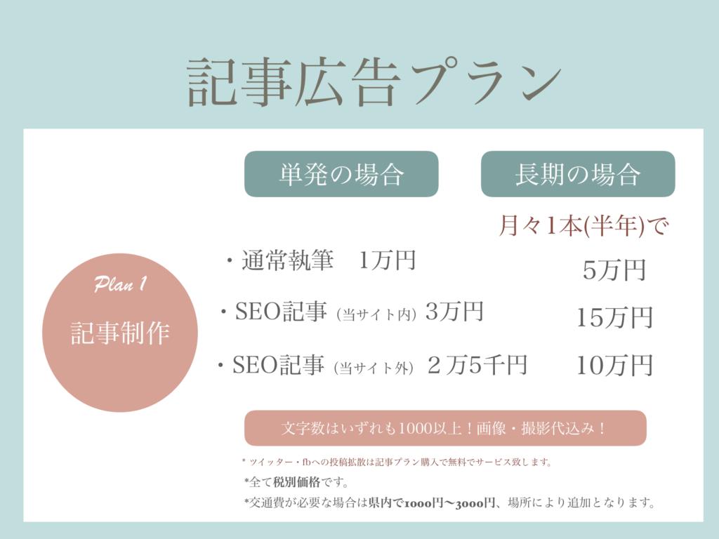 ads3-article-plan2020-ishikawa19