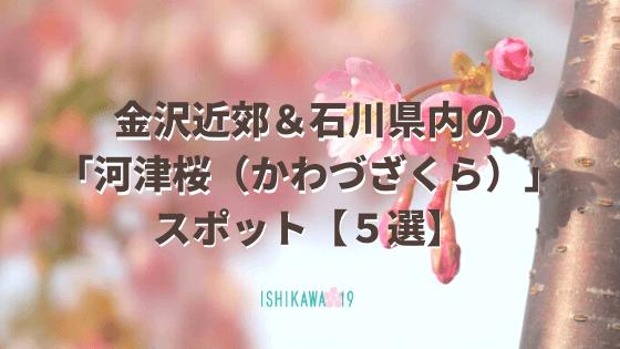 kawazu-sakura-ishikawa