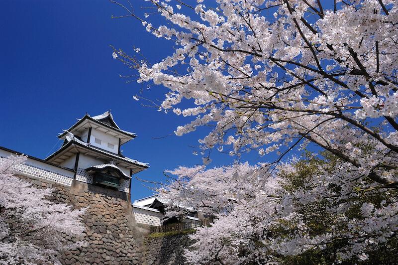 kanazawajyou-kenrokuen-spring