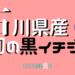 fig-ishikawa-maboroshi-